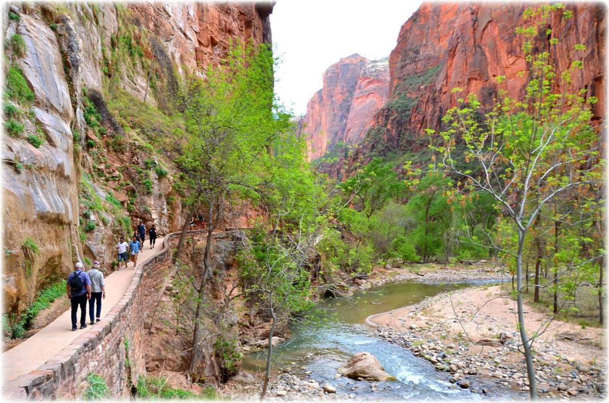 The Grand Circle Tour – Day One – Zion National Park